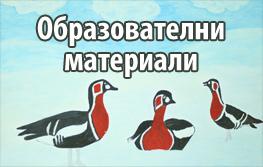 http://bspb-redbreasts.org/bg/obrazovatelni-materiali.html