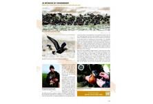 Oiseaux Passion, март 2013