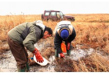 Field conservation activities