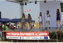 Фестивал на хвърчилата 2011