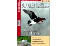 Der Falke, February 2013