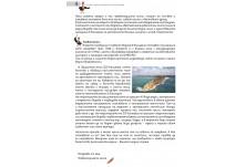 Писмо от Сибир