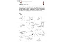 Човекът и природа, Биология