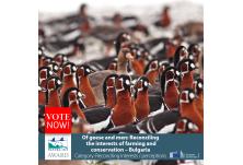 """Гласувайте за проекта на БДЗП за престижната награда на публиката """"Натура 2000"""""""